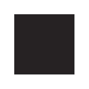 595 BLACKEST BLACK.png
